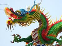 דרקון סין אסיה / צלם: פוטוס טו גו
